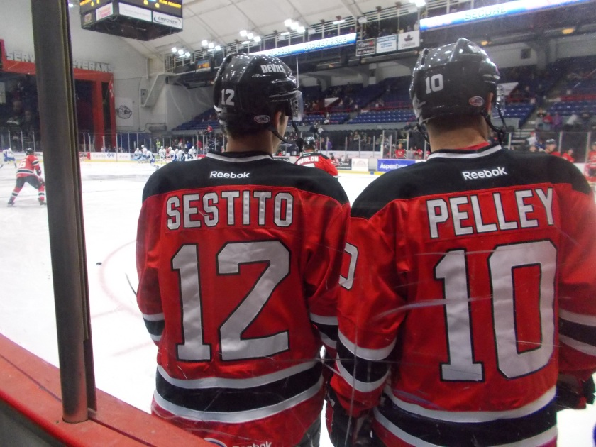 Tim Sestito and Rod Pelley