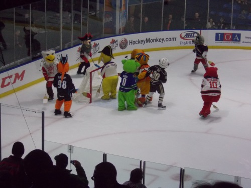 First intermission entertainment: mascot broomball!
